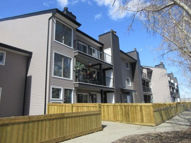 103 12412 161 Avenue, Edmonton, AB T5X 4W6 (#E4119005) :: The Foundry Real Estate Company