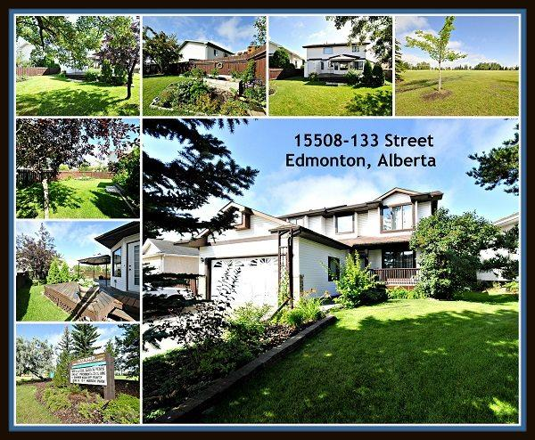15508 133 Street, Edmonton, AB T6V 1B7 (#E4125287) :: The Foundry Real Estate Company