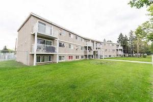 302 8930 149 Street, Edmonton, AB T5R 1B8 (#E4125634) :: The Foundry Real Estate Company