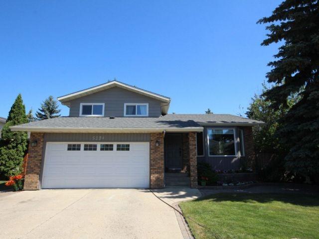 5224 Hill View Crescent, Edmonton, AB T6L 2E4 (#E4130569) :: The Foundry Real Estate Company