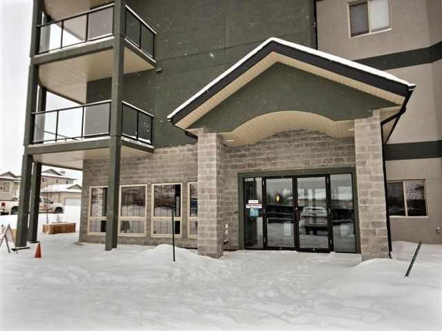 201 16235 51 Street, Edmonton, AB T5Y 3C7 (#E4135052) :: The Foundry Real Estate Company