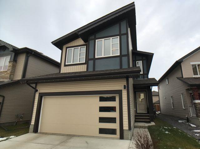 8722 Carson Way, Edmonton, AB T6W 3K8 (#E4136928) :: The Foundry Real Estate Company