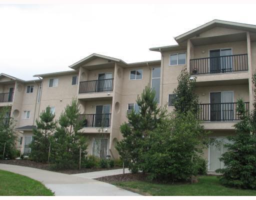 302 12710 127 Street, Edmonton, AB T5L 1A5 (#E4137003) :: The Foundry Real Estate Company