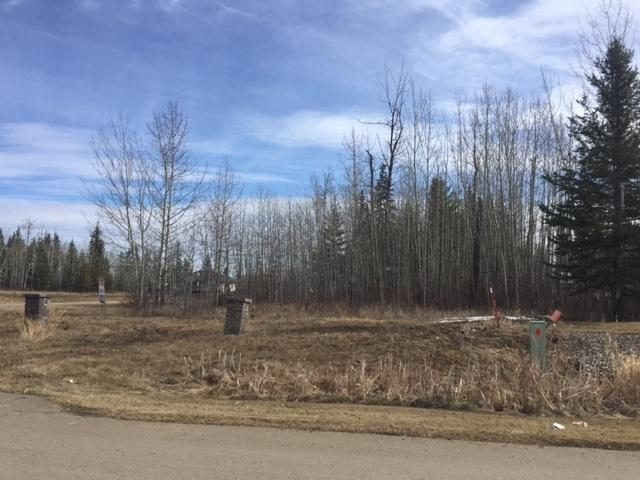 53 53305 Rge Rd 273 Road, Rural Parkland County, AB T7X 3N3 (#E4138823) :: David St. Jean Real Estate Group