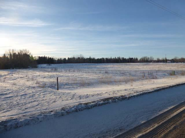 0 0, Thorsby, AB T0C 2P0 (#E4140887) :: The Foundry Real Estate Company