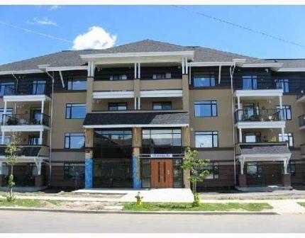 116 1589 Glastonbury Boulevard, Edmonton, AB T5T 2V1 (#E4141684) :: Müve Team | RE/MAX Elite