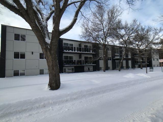 107 10720 127 Street, Edmonton, AB T5M 0S3 (#E4143016) :: Müve Team | RE/MAX Elite