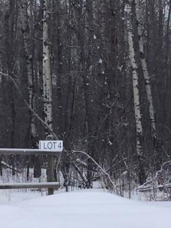 48062 Rr 273, Rural Leduc County, AB T0C 2C0 (#E4144194) :: Müve Team | RE/MAX Elite