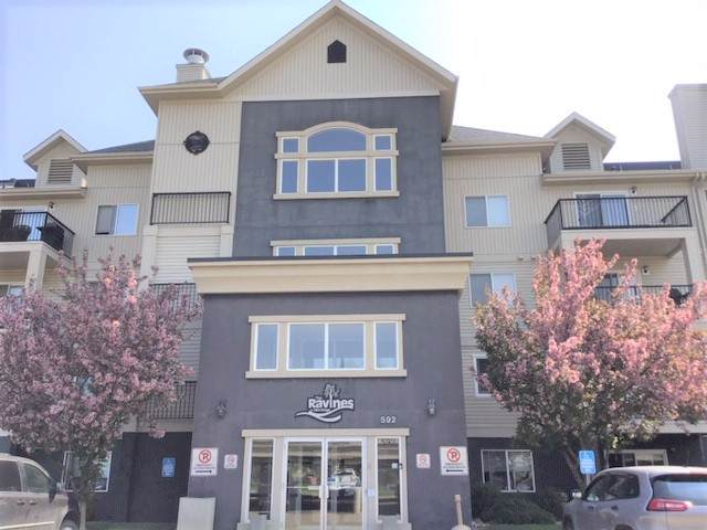 201 592 Hooke Road, Edmonton, AB T5A 5H2 (#E4177487) :: Initia Real Estate