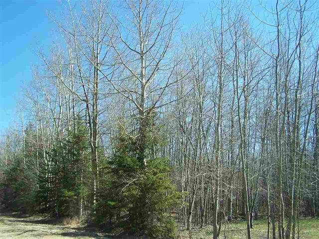 54017 757 Highway, Rural Parkland County, AB T0E 0S0 (#E4184443) :: The Foundry Real Estate Company