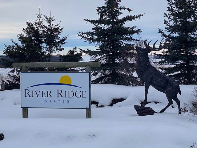 8 River Ridge Estates, Rural Wetaskiwin County, AB T0C 2V0 (#E4185421) :: The Foundry Real Estate Company