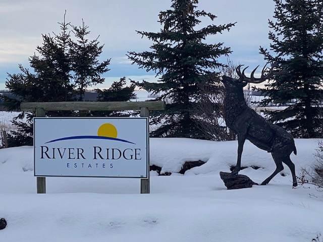 13 River Ridge Estates, Rural Wetaskiwin County, AB T0C 2V0 (#E4185423) :: The Foundry Real Estate Company