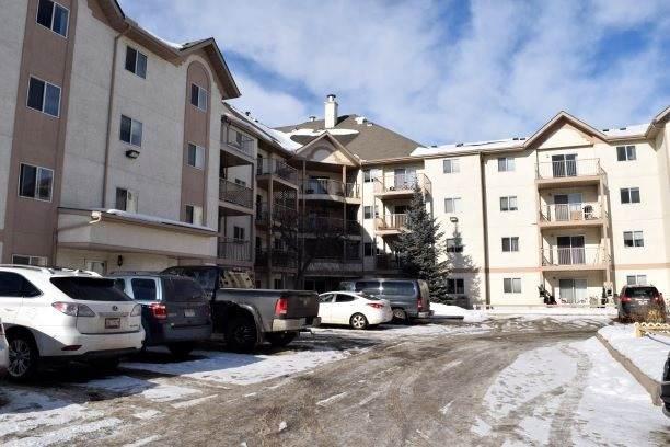 215 11218 80 Street, Edmonton, AB T5B 4V9 (#E4188398) :: Initia Real Estate