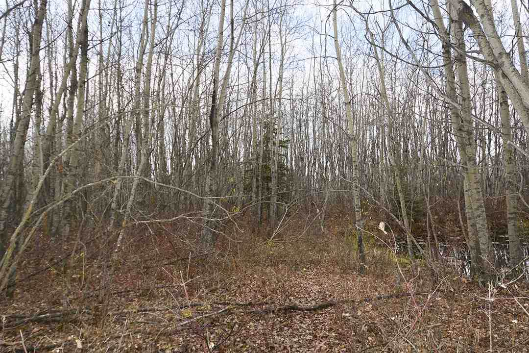 57128 Range Road 271 - Photo 1