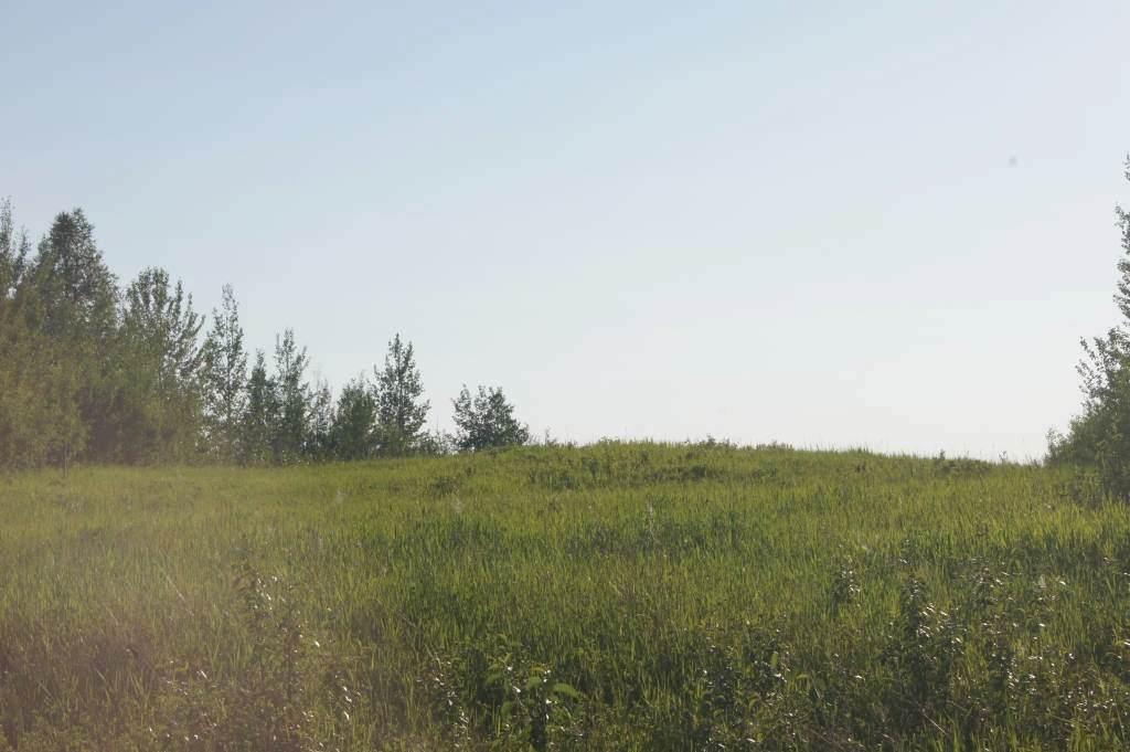 Range Road 150 Hwy 748 East - Photo 1