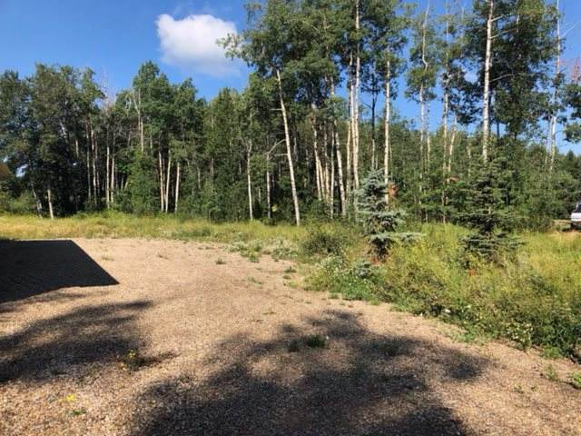 568 Beach Road, Rural Wetaskiwin County, AB T0C 2V0 (#E4199594) :: The Foundry Real Estate Company