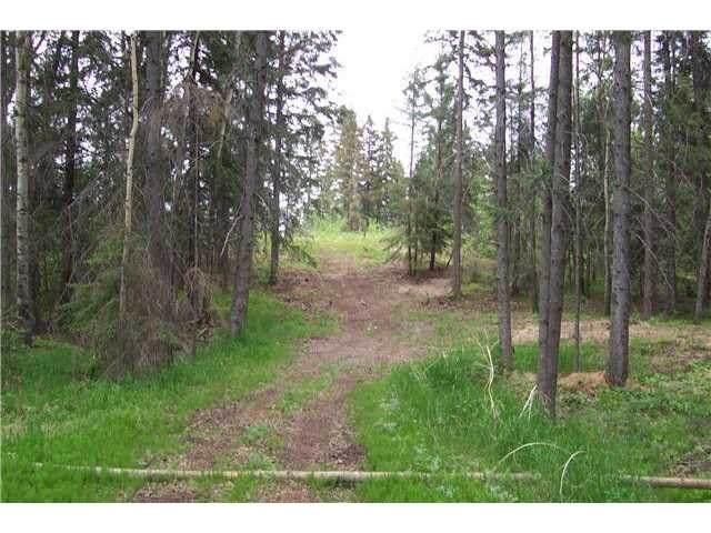 33 57108 Range Road 220, Rural Sturgeon County, AB T0A 2W0 (#E4201041) :: RE/MAX River City