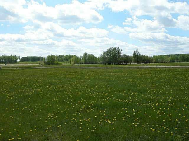224 62002 TWP RD 462 A, Rural Wetaskiwin County, AB T0C 0T0 (#E4201964) :: RE/MAX River City