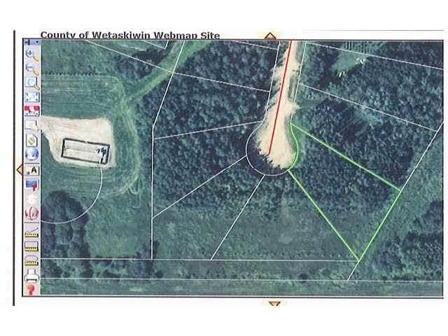 22 Beachside Estates, Rural Wetaskiwin County, AB T0C 2V0 (#E4203967) :: Initia Real Estate