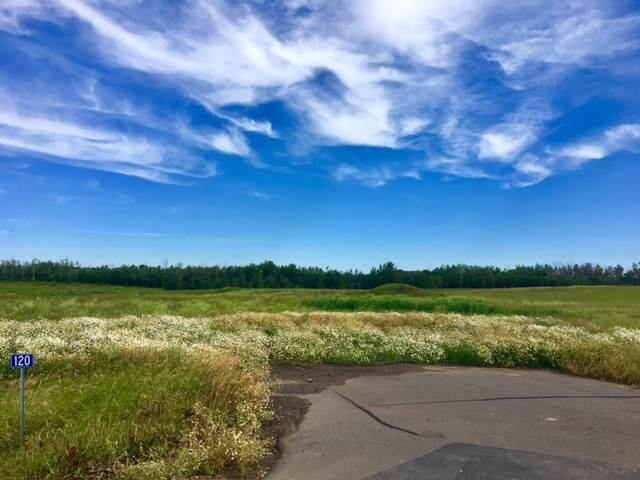140 50428 Range Road 234, Rural Leduc County, AB T4X 0S1 (#E4208602) :: Initia Real Estate