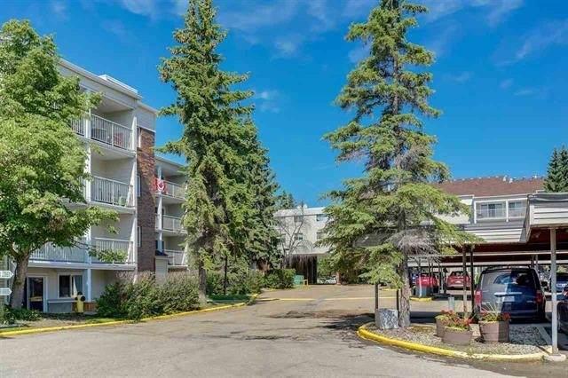 335 4404 122 Street, Edmonton, AB T6J 4A9 (#E4221578) :: The Foundry Real Estate Company