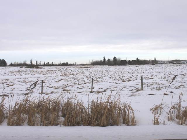 50 Ave 53 Street, Ryley, AB T0B 4A0 (#E4223792) :: The Foundry Real Estate Company