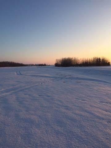 40 Edith Crescent, Rural Sturgeon County, AB T0G 1L0 (#E4224146) :: RE/MAX River City