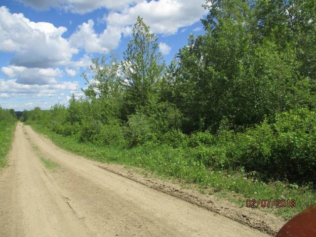 NW-17-62-12-W4 County Of St. Paul, Rural St. Paul County, AB T0A 3A3 (#E4225908) :: RE/MAX River City