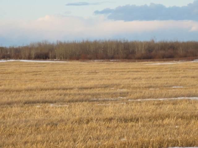 lamont County, Rural Lamont County, AB T0B 2R0 (#E4226174) :: Initia Real Estate