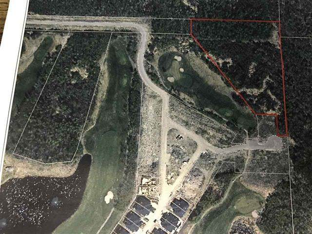 51101 Range Road 222, Rural Strathcona County, AB T8C 1G9 (#E4228367) :: RE/MAX River City