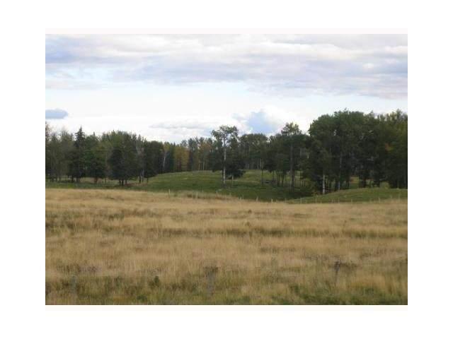 LOT #6 River Ridge Estates, Rural Wetaskiwin County, AB T0C 2V0 (#E4232824) :: Initia Real Estate
