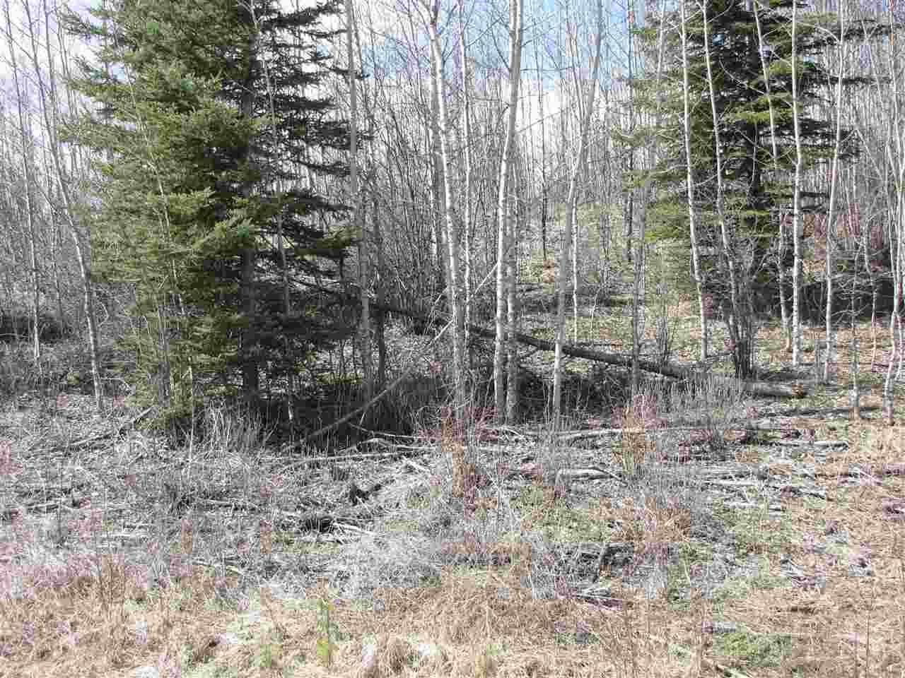 25 Mountain Springs - Photo 1