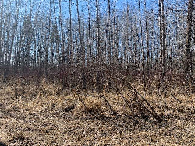 621 54426  Rge Rd 40, Rural Lac Ste. Anne County, AB T0E 0A0 (#E4239364) :: The Foundry Real Estate Company