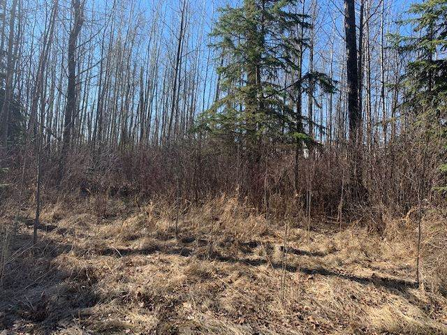 615 54426  Rge Rd 40, Rural Lac Ste. Anne County, AB T0E 0A0 (#E4239367) :: The Foundry Real Estate Company