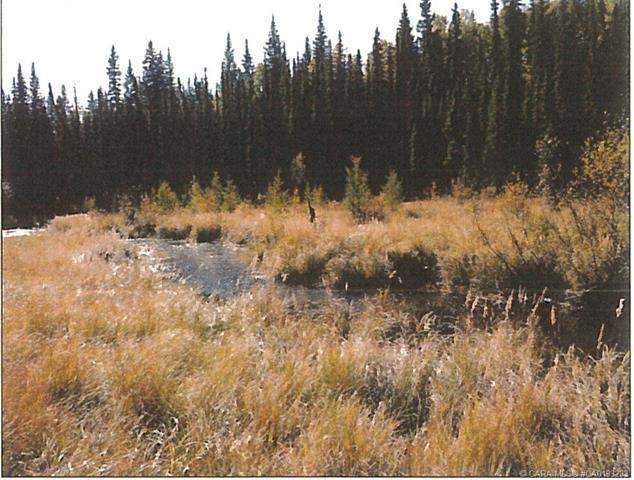 53315 Bench Creek Estates Road, Rural Yellowhead, AB T7E 0B3 (#E4240714) :: Initia Real Estate