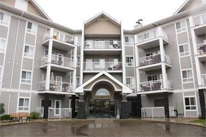 408 5340 199 Street, Edmonton, AB T6M 0A5 (#E4243094) :: Initia Real Estate