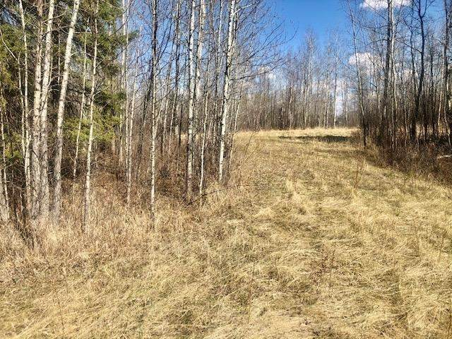27A Village West Estates, Rural Wetaskiwin County, AB T0C 2V0 (#E4243297) :: Initia Real Estate