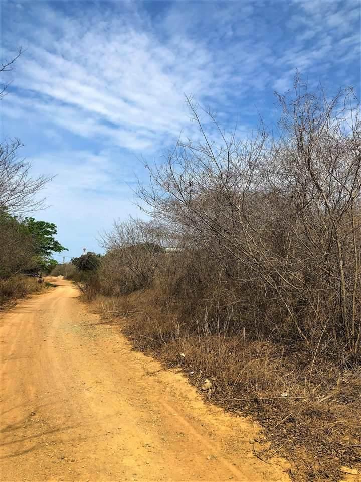 Av De La Bahia El Palmar - Photo 1