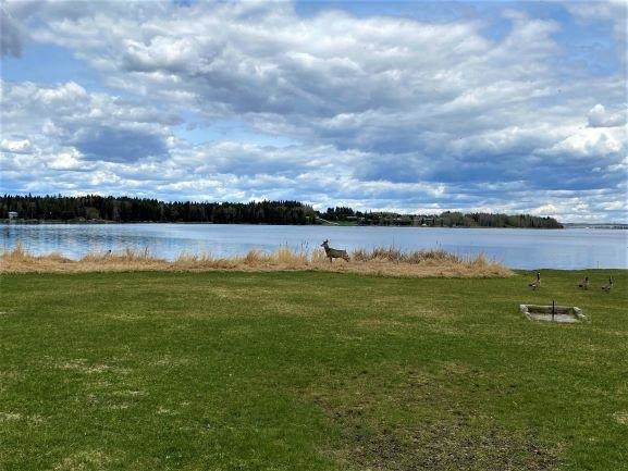 302 Lakeshore Drive, Rural Wetaskiwin County, AB T0C 0T0 (#E4243709) :: Initia Real Estate