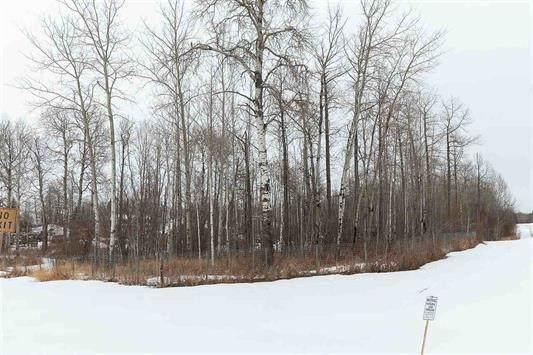 64 5124 Twp 554 Road, Rural Lac Ste. Anne County, AB T0E 1V0 (#E4244467) :: Müve Team | RE/MAX Elite