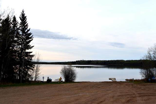 3 Golden Sands Dr, North Buck Lake, Rural Athabasca County, AB T0A 0M0 (#E4244515) :: RE/MAX River City