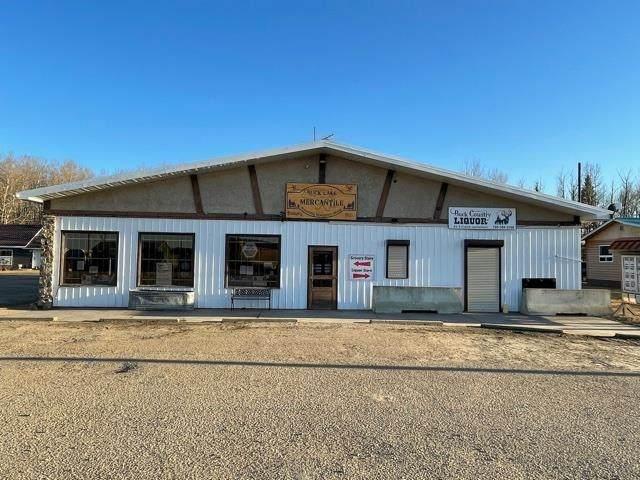 701 Lakeshore Drive W, Rural Wetaskiwin County, AB T0C 0T0 (#E4249072) :: Müve Team | RE/MAX Elite