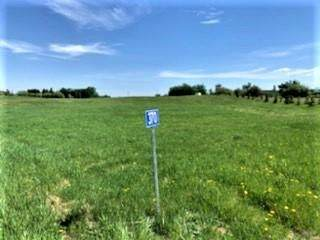 370 50353 RGE RD 224, Rural Leduc County, AB T4X 1K8 (#E4249871) :: Müve Team | RE/MAX Elite