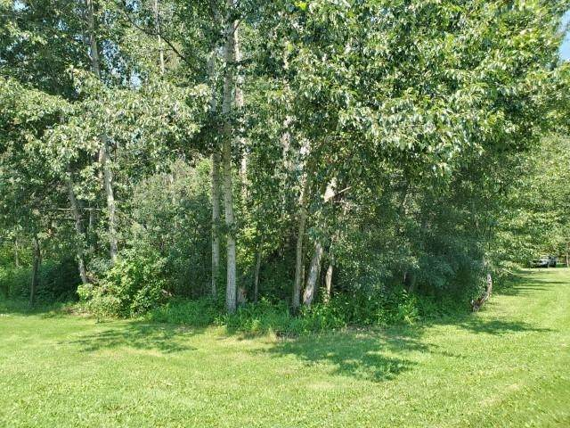 6 Summerhaven Estates, Rural Wetaskiwin County, AB T0C 1H0 (#E4252849) :: Initia Real Estate
