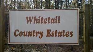 Lot 10 27331 Township Road, Rural Leduc County, AB T0C 2C0 (#E4254983) :: The Good Real Estate Company