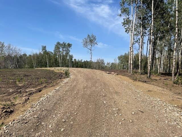 12 52528 Range Road 191, Rural Beaver County, AB T0B 4J0 (#E4260109) :: Müve Team | Royal LePage ArTeam Realty