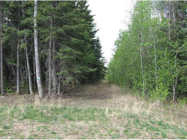 304 Topaz Lane, Rural Lac Ste. Anne County, AB T0E 0J0 (#E3406674) :: The Foundry Real Estate Company