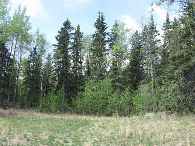 306 Topaz Lane, Rural Lac Ste. Anne County, AB T0E 0J0 (#E3415539) :: The Foundry Real Estate Company