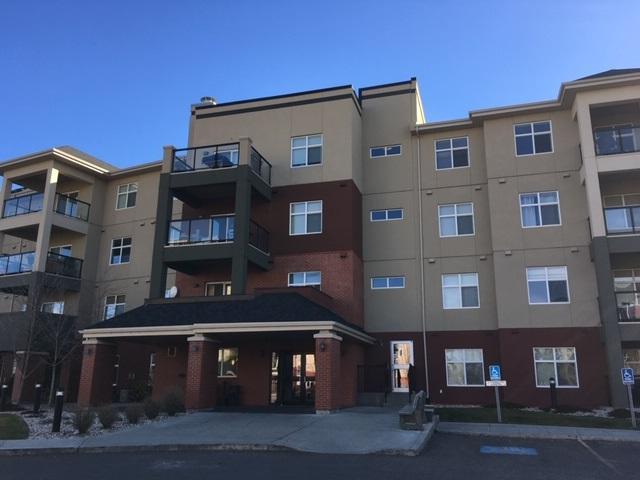 233 7825 71 Street, Edmonton, AB T6B 3R9 (#E4134122) :: The Foundry Real Estate Company