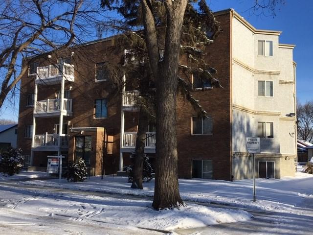 303 11825 71 Street, Edmonton, AB T5B 1W4 (#E4136119) :: The Foundry Real Estate Company